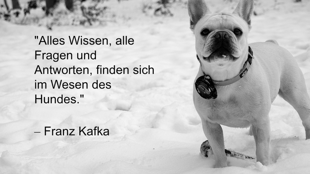 Wilma Spruch
