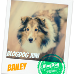 BlogDog Juni: Pfeif auf Germanys Next Topwuff!